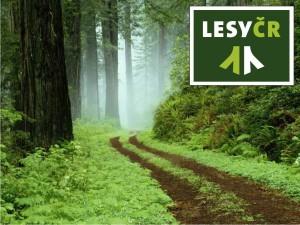 lesycr
